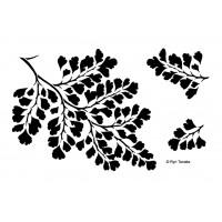 Designs by Ryn Pochoir - Maidenhair Fern