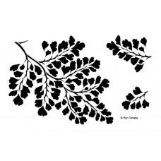 Designs by Ryn Stencil - Maidenhair Fern