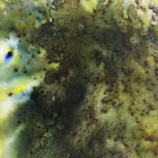 PaperArtsy Infusions - Olive tree