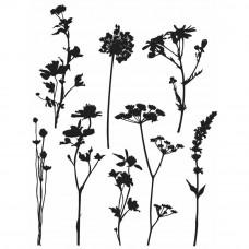 Tim Holtz stamps: Wildflowers