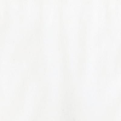 BAZZILL WHITE VELLUM 40lb