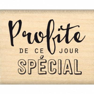 PROFITE DE CE JOUR-  Wood Mounted Florilège Stamp